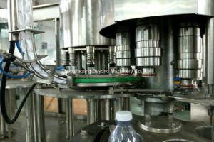 1つの水差しの液体の充填機に付き中国3つ