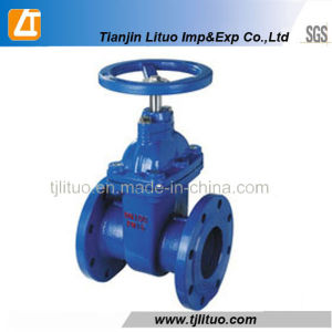Buon Quality a Cheap Price GOST Gate Valve