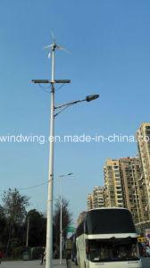 Generador eólico horizontal de 300W y un panel solar sistema híbrido de la luz de la calle