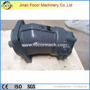 Pompa di A2fo fatta dalla fabbrica dell'OEM della Cina