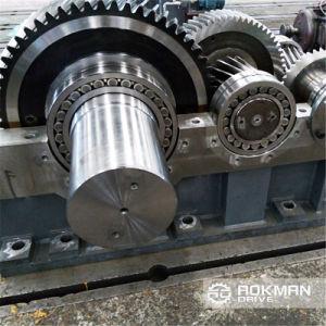 Scatola ingranaggi cilindrica indurita serie di Zy