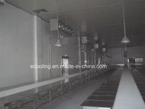 Kundenspezifische große Schuppen-Kaltlagerung für Landwirtschafts-Produkt-Geschäftsmitte