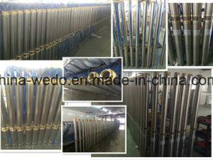 4SDステンレス鋼の深い井戸の浸水許容の水ポンプ