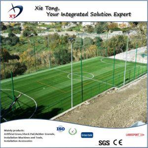Diseño profesional de todo el césped artificial de fútbol Sistema presentaron 5 personas.