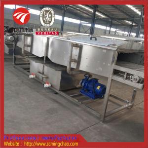 청과 또는 나물 청소 기계를 위한 고압 살포 세탁기술자
