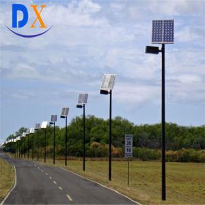 IP67 6mポーランド人の太陽動力を与えられたLEDの太陽ライト3年の保証40W