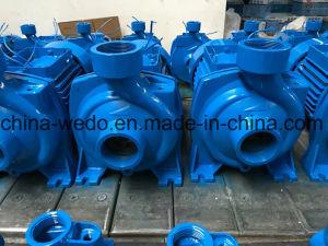 elektrische zentrifugale Wasser-Pumpe für Bewässerung (HF/5C)