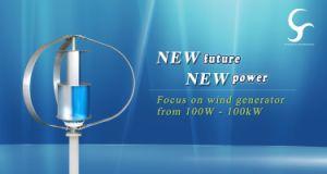 2018 Venta caliente 600W 24V Maglev generador eólico de eje vertical