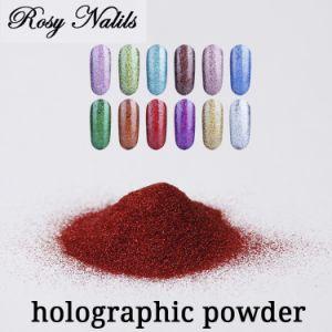 Meilleure vente charmant pigments effet holographique de poudre
