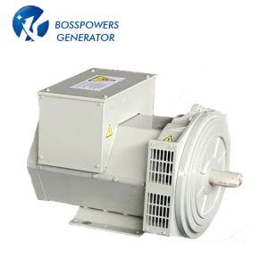 Источник питания Bci184f Стэмфорд 22ква бесщеточный генератор переменного тока 230 В в Турцию