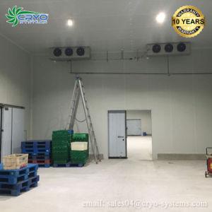 Unidade de condensação de Dois Estágios Bitzer queda na Unidade Coolroom Sala Fria a unidade do compressor