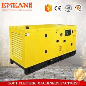 경제력 AC 1/3phases Cannopy 80kw 100kVA 침묵하는 디젤 엔진 발전기 Genset