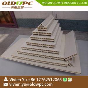 Linea di produzione di plastica di legno dell'espulsore delle mattonelle di pavimentazione del PE macchina dell'espulsione
