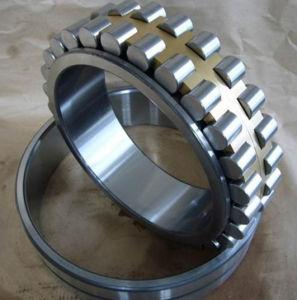 precio de fábrica rodamiento de rodillos cilíndricos Nnu 4924 K/W33