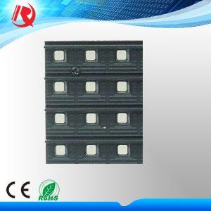 屋外の防水高い明るさP10 LED Screen/LED Sign/LEDの表示Panel/LEDモジュール