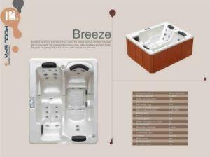 En el interior Balboa SPA/bañera de hidromasaje (Brisa)