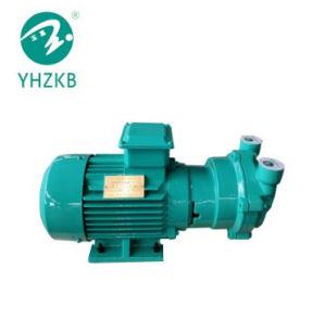 플라스틱 밀어남 선을%s Sk 0.3A 액체 또는 물 반지 진공 펌프