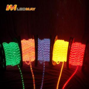Strisce della flessione LED di RGB con AC220V con CE RoHS