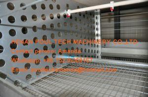 알제리아 가금 농장 - 건전지 닭 감금소 & Breeding 감금소 & 자동적인 계란 수집 기계를 가진 계란 생산을%s 종축 감금소