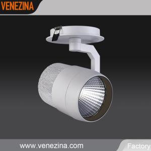 LED de alta potencia 40W foco empotrado CRI80-R6302
