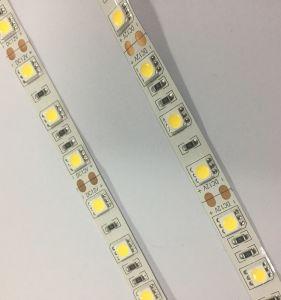 Caldo! ! Striscia Rainproof economizzatrice d'energia di 5050 LED con multicolore