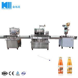 Volles automatisches Haustier-Flaschen-Saft-Getränkewaschende füllende mit einer Kappe bedeckende Maschine