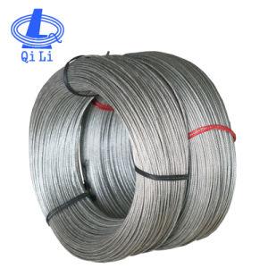 Fune metallica calda dell'acciaio inossidabile 7X7 di vendita 316