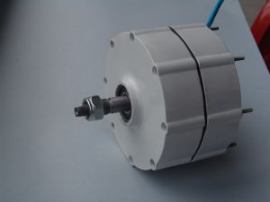600W 48V低いRpmの永久マグネット発電機の交流発電機(SHJ-600M2)
