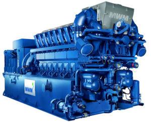Centrale elettrica di raffreddamento unita del generatore di potere e del riscaldamento (CCHP)