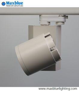 Perfect HeatsinkおよびBrand Meanwell Driverの15W LED Lamp