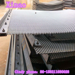 網によってひだを付けられる金網(XA-CWM05)をふるうステンレス鋼の砂