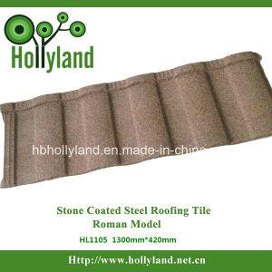 Toit de métal recouvert de carrelage en pierre (Roman Type)
