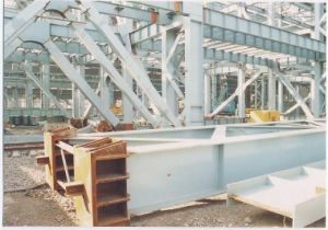 Edificio de la estructura de acero para la planta de fábrica (SS-531)