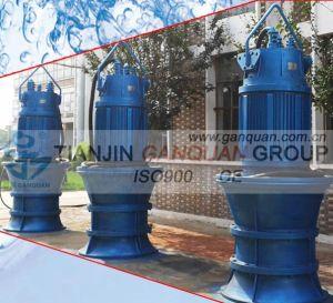 Pompa di flusso assiale (QZB)