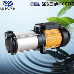 Mini pompa a più stadi orizzontale elettrica ad alta pressione 0.75HP dell'acciaio inossidabile