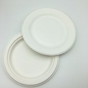 9pulgadas suministros de parte de las placas de pasta de caña de azúcar de papel