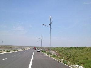 turbina di vento 1kw con l'invertitore del regolatore di MPPT