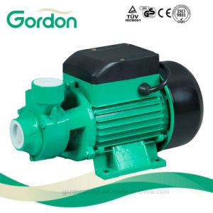 Медный провод Qb60 электрический водяной насос периферийных устройств с помощью латунной крыльчатки