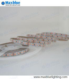 Cc12V/24V 8mm/10mm 3528 120LED TIRA DE LEDS por metro