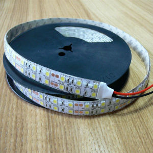 Selling caldo IP65 Double Row 120LED/Meter Flexible 5050 LED Strip Light (MJ-FS5050W120)