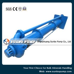 Pompe verticale minérale Le traitement des effluents de la pompe de lisier de manutention