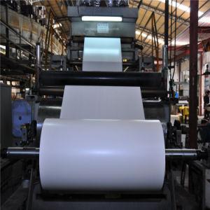 Одноразовые пищевой категории PE бумага с покрытием наружное кольцо подшипника вентилятора для приготовления чашки бумаги в рулон
