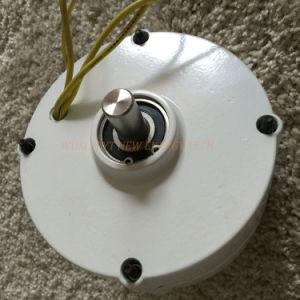 100W 12V/ 24V Pmg avec contrôleur de charge générateur à aimant permanent de bas régime