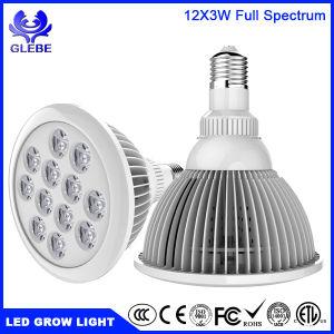 Full Spectrum 12 Lâmpada LED crescer luz por38 Luz de plantas de LED