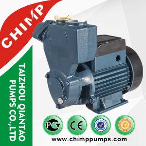 Chimpanzé 1/2HP Self-Priming bomba eléctrica de água limpa