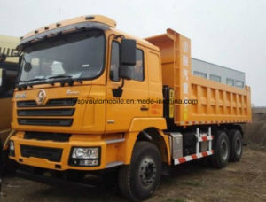 camion del camion di 6X4 Shacman 350HP 25 tonnellate di autocarro a cassone