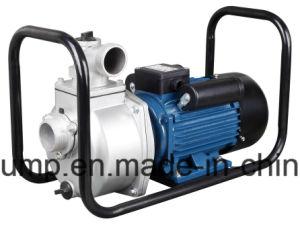 容易大きい水容量の電気遠心水ポンプを運びなさい