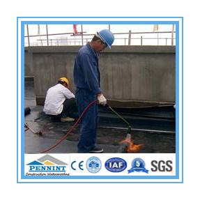 屋根シートとしてイギリスEnの標準瀝青の防水膜