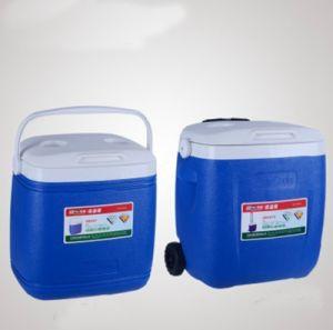 Migliore sacchetto mini di vendita del pranzo del dispositivo di raffreddamento del carrello per il picnic