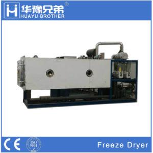 Fd-50L 500Kgs Liofilizador Industrial Precios Secador de vácuo na China